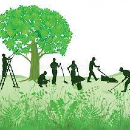 Apple Yard Tree & Gardening Services