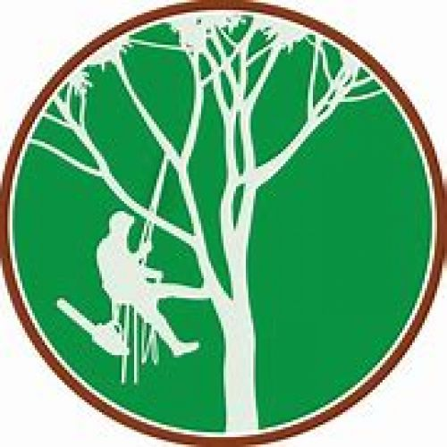 CRW Tree Surgery