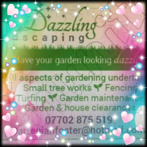 Dazzling Landscaping